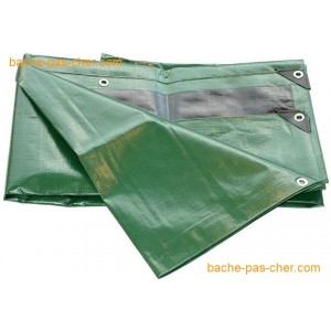https://www.bache-pas-cher.com/42391-1269-thickbox/baches-plastique-en-hdpe-polyethylene-renforce-haute-densite-250-gr-3-x-5-m-verte.jpg